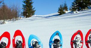 alquiler de raquetas de nieve en Ezcaray