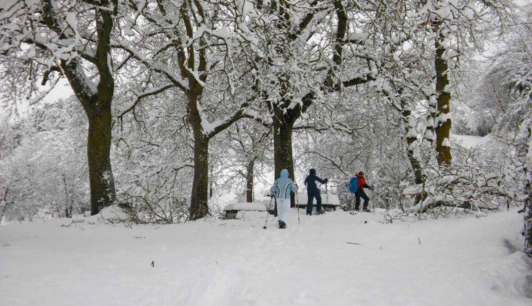 Ya es invierno en Ezcaray