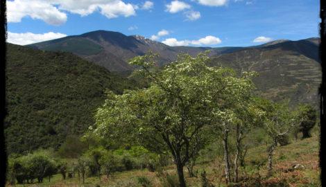 Sierra de la Demanda: Situación geográfica y lo que hay que ver y hacer