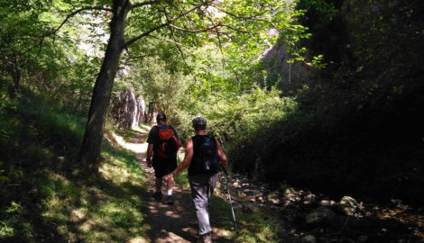 Turismo activo y de naturaleza por la Sierra de la Demanda- La Rioja