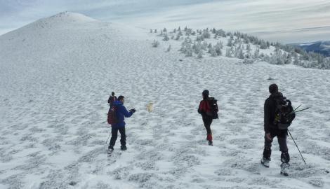 PICO GATÓN                      (2.038 m)