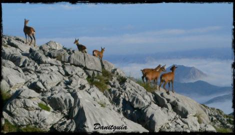 Rutas en Picos de Europa: Aspectos a tener en cuenta